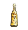 color traditional mexican tequila drink bottle vector image