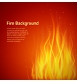 Flame red background vector image