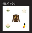 flat icon fiber set of bud pullover cotton and vector image vector image