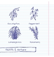 Handdrawn - Health and Nature Set