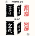 karate kudo vector image