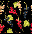 seamless pattern with currant berries and leaves vector image vector image