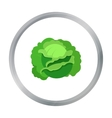 Cabbage icon cartoon Single plant icon from the vector image