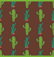 cactus home nature of green vector image vector image