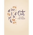 decorating design with the cats vector image
