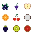 Fruit icons set flat style vector image