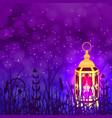 ramadan kareem lantern and night sky vector image
