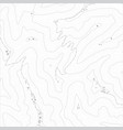 topographic map texture vector image vector image