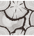 tree rings set concept saw cut tree trunk vector image