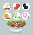 bowl salad vegetables appetizer dinner vector image