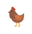 brown chicken with red beak scallop and orange vector image vector image