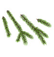 christmas tree element vector image vector image