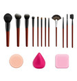 cosmetic makeup tools set vector image