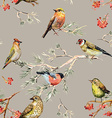 seamless texture of cute birds watercolor painting vector image vector image