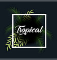 trendy summer tropical leaves banner vector image