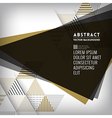 Abstract black triangle Shape Background vector image vector image