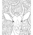 adult coloring bookpage a cute head of antilope vector image