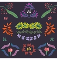 Collection of plants flowers and leaves vector image vector image