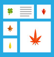 flat icon leaves set of aspen alder maple and vector image
