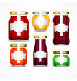 fruit jam jars with figured vector image