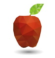 Red apple in geometric origami style vector image