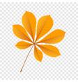 autumn chestnut leaf icon flat style vector image