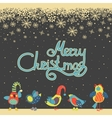 Cute birds celebrating Christmas vector image vector image