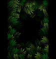 exotic pattern with tropical leaves on a black vector image vector image