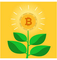 golden bitcoin concept tree background imag vector image