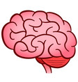 human brain isolated design vector image vector image