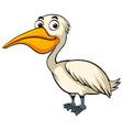 pelican with happy face vector image