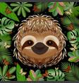 sloth head face portrait beige fur cartoon style vector image