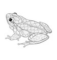 adult coloring bookpage a cute frog image for vector image
