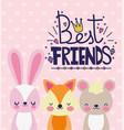 cute animals fox rabbit bear best friends card vector image