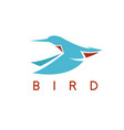 flying abstract kingfisher bird design template vector image