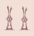 funny rabbit character vector image vector image