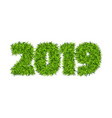green grass 2019 vector image vector image