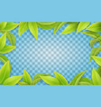green leaves frame on transparent background vector image vector image