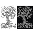 old tree without leaves on white and black backgro vector image vector image