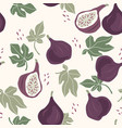 seamless pattern with figs trendy hand vector image vector image