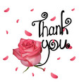 thank you with rose vector image vector image