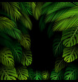 exotic pattern with tropical leaves on a black bac vector image vector image