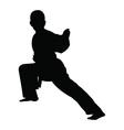 Karate boy silhouette vector image vector image