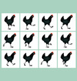 walking black hen animation sprite sheet isolated vector image vector image