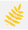 yellow rowan leaf icon flat style vector image