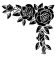 corner of roses vector image vector image