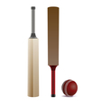 Cricket Elements vector image vector image