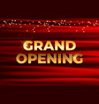 grand opening card background eps10 vector image vector image