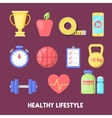 Healthy Lifestyle Fitness Icon Set vector image vector image