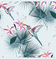 pattern background with humming bird vector image vector image